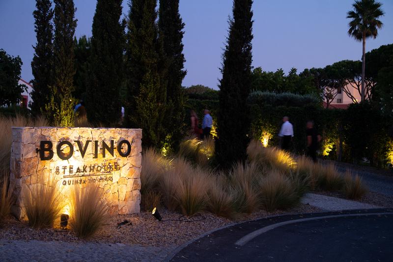Bovino (26 of 182)